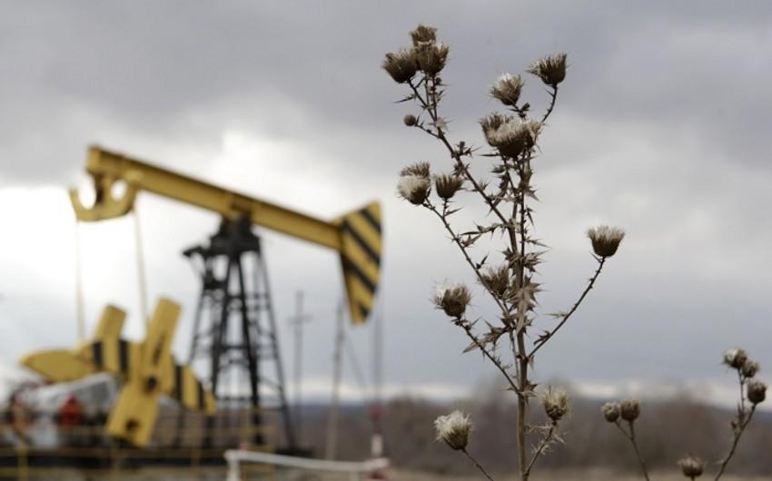 Rusiya neft istehsalını rekord həddə çatdırıb