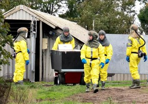 Spain detects new COVID outbreak on mink farm