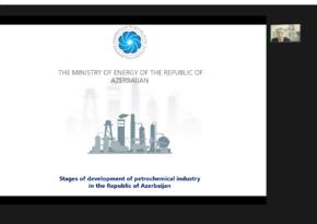 Energetika Nazirliyinin əməkdaşları beynəlxalq konfransda iştirak edib
