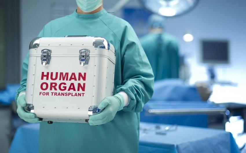 Orqan transplantasiyası ilə bağlı qanun layihəsi müzakirəyə çıxarılır