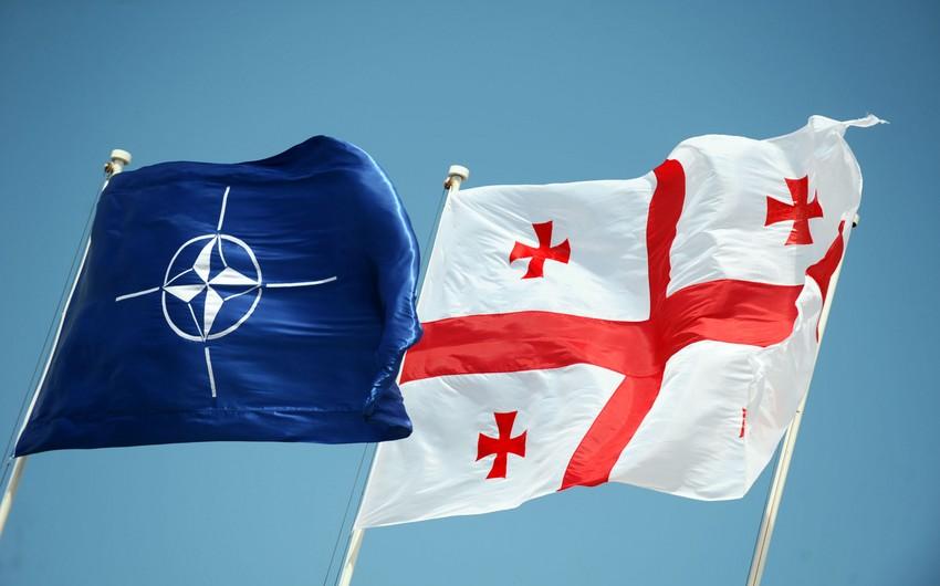 МИД России : Углубление сотрудничества Грузии и НАТО угрожает региональной безопасности