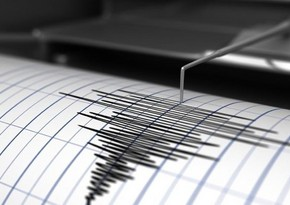 Strong earthquake shakes Chile