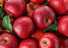 Россельхознадзор разрешил импорт азербайджанских яблок в Россию