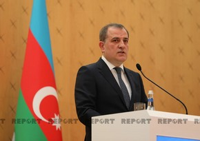 Azerbaijani Foreign Minister: We value relations with Sweden