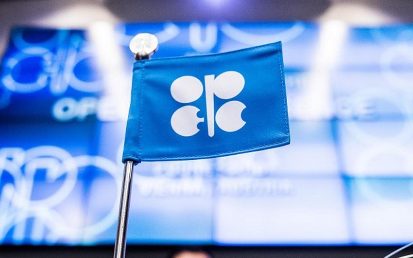 OPEC+ hasilatın bərpa edilməsi planının saxlanılmasını tövsiyə edib