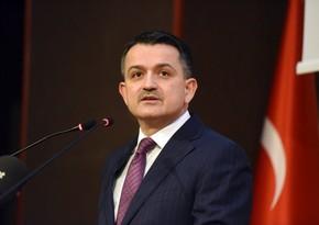 Türkiyədə bütün meşə yanğınları söndürülüb