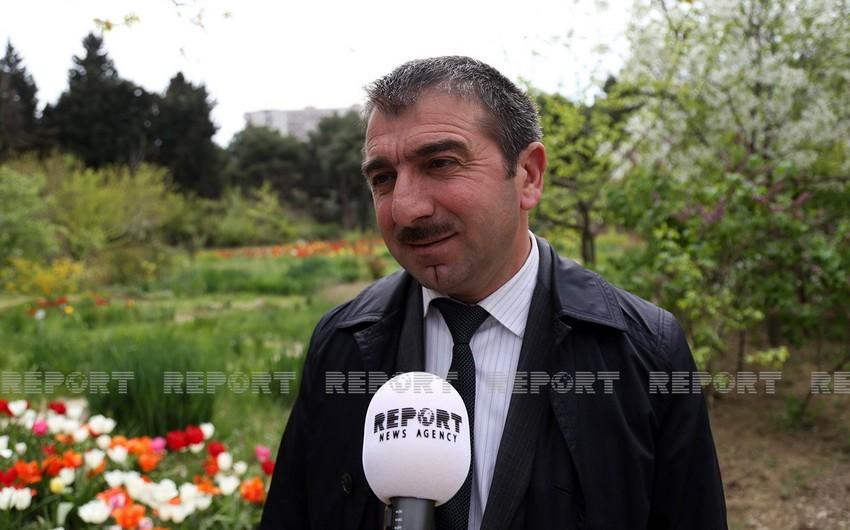 Nəbatat bağının direktoru: Yulğun kolları Qırmızı kitaba salınmış bitkilərlə səhv salınır