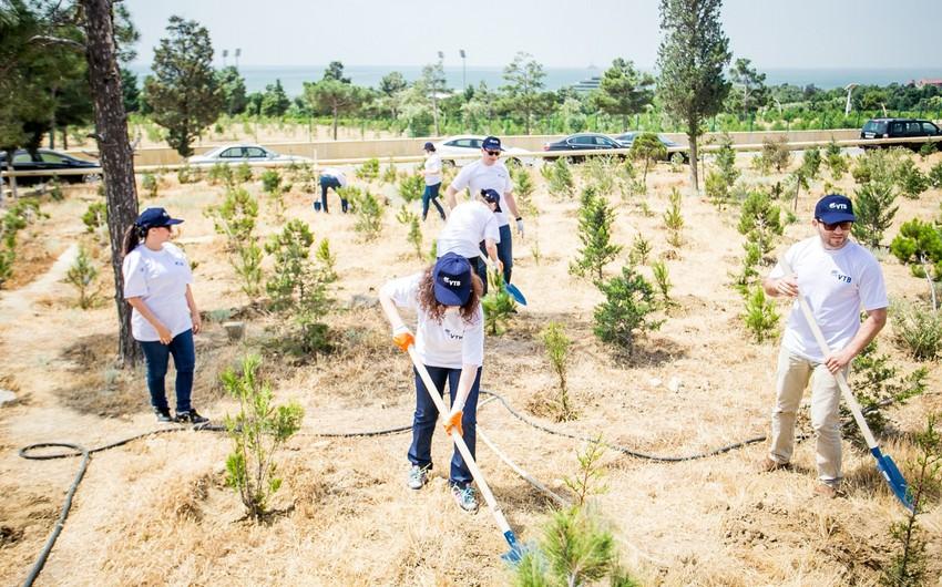 Банк ВТБ (Азербайджан) посадил 100 деревьев в честь 100-летнего юбилея АДР