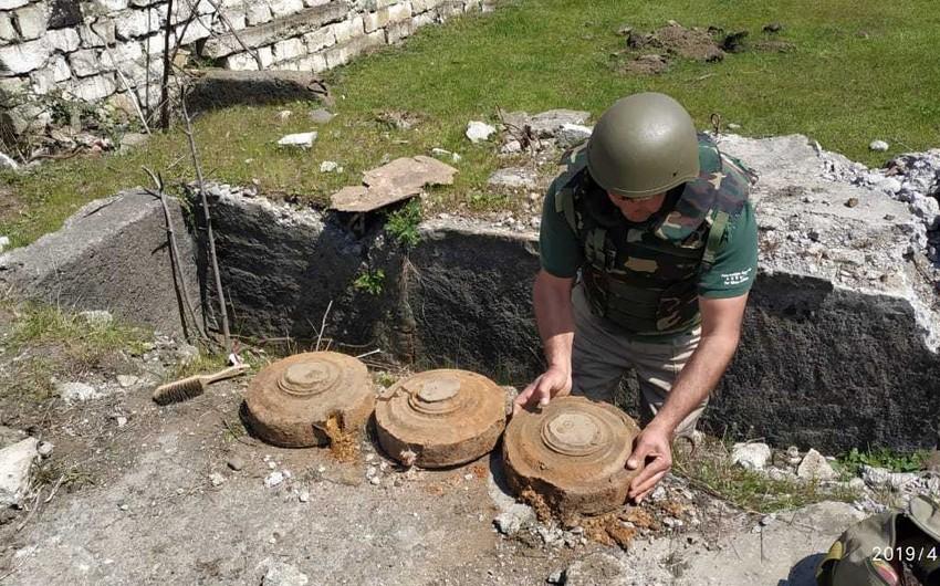 Lənkəranda 9 ədəd təlim məqsədli tank əleyhinə mina tapılıb - FOTO