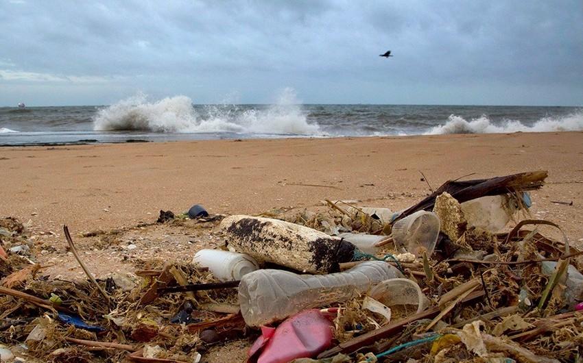 Ученые узнали, куда девается пластик из океанов