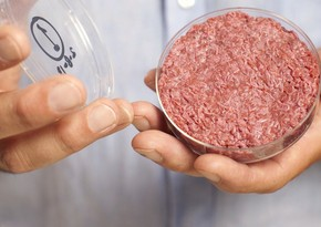 Scientists: Meat, milk to become artificial in future