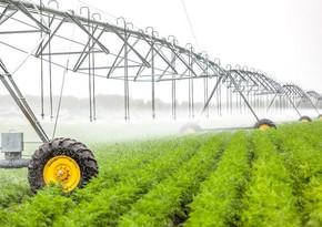 Azərbaycanda aqrar sektor 2%-dən çox böyüyüb