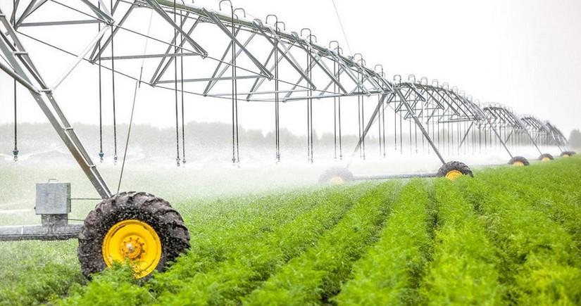 В Азербайджане аграрный сектор вырос на 2 %