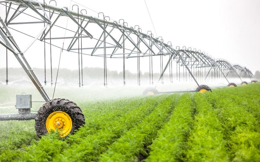 Azerbaijan's agrarian sector grows by 2%