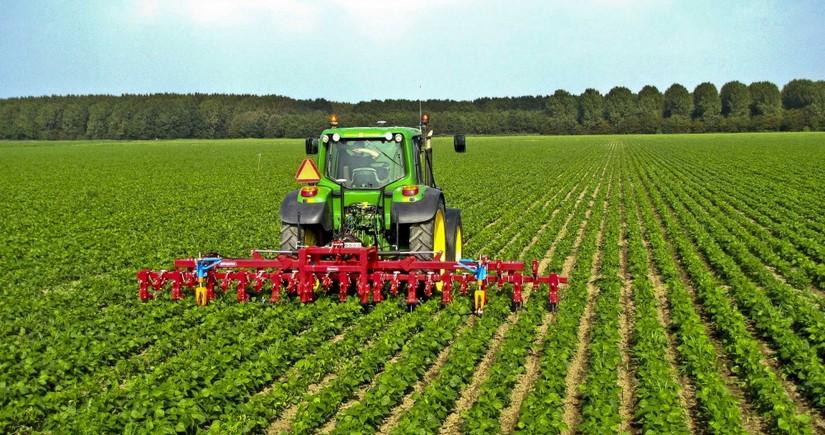 Аграрный сектор Азербайджана вырос на 3%