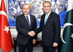 Pakistan, Turkey agree to adopt joint strategy at international level