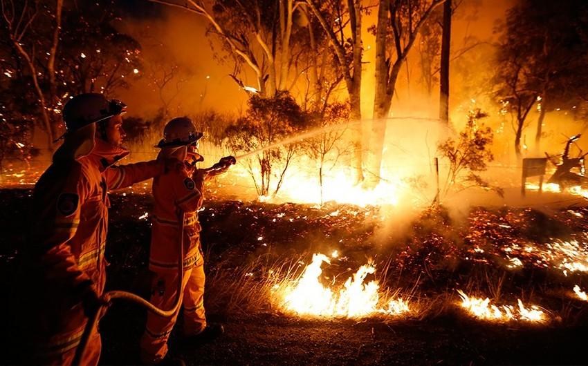 Пожары в Австралии: жителям столицы рекомендуют не выходить из дома - ФОТО