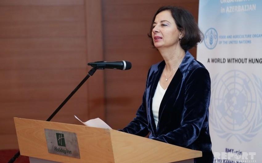 BMT Azərbaycandakı iqlim dəyişmələrinin səbəbini açıqlayıb