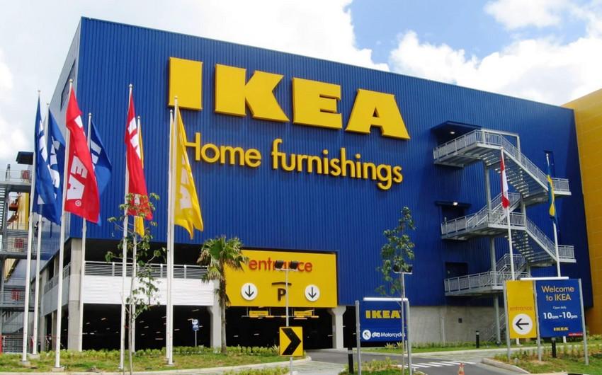 IKEA ABŞ-da 4,5 min hektar meşəni alıb