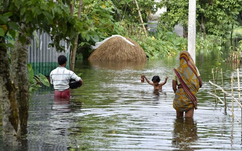 Около 2,4 тыс. человек погибли в Индии в сезон муссонов в 2019 году