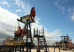 Беларусь начала поставку нефтепродуктов через российские порты