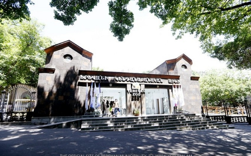 Yerevan zooparkının əməkdaşları etiraz aksiyası keçirib