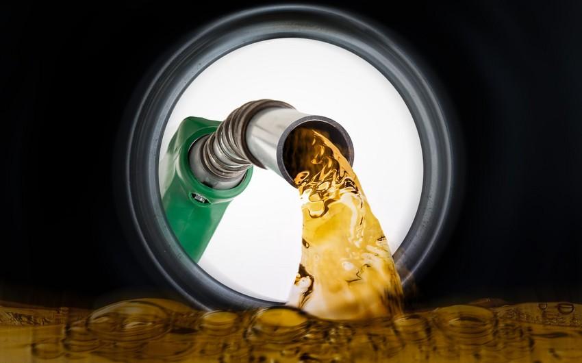 Azərbaycanın Gürcüstanın yanacaq idxalındakı payı azalıb