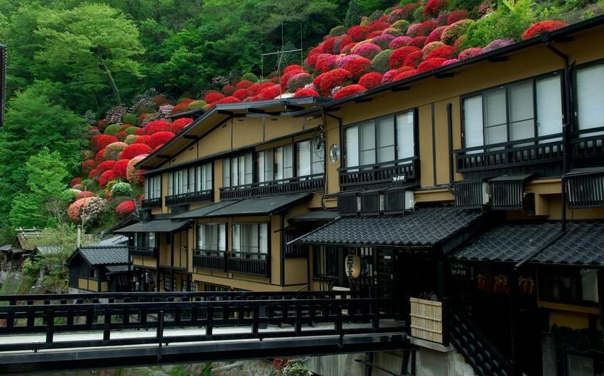 Yaponiyada koronaviruslu xəstələr mindən çox hotelə yerləşdiriləcək