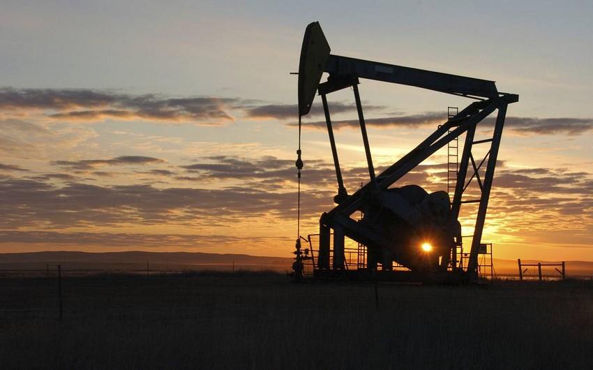 ABŞ hökuməti: Bu il neft bolluğu olacaq