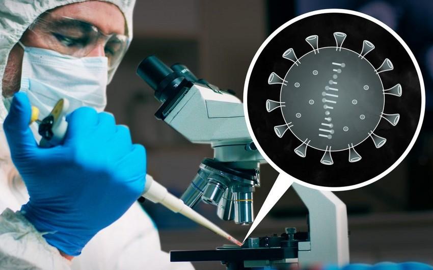 Alimlər: Koronavirus daha çox yoluxucu olub