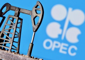 OPEC raises forecast on Azerbaijan's liquid hydrocarbons