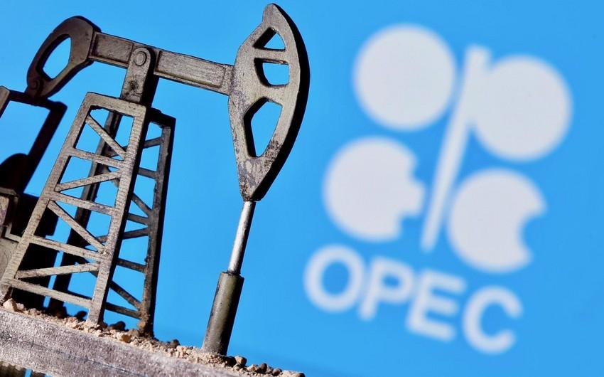 OPEC Azərbaycanda maye karbohidrogenlər üzrə hasilat proqnozunu artırıb