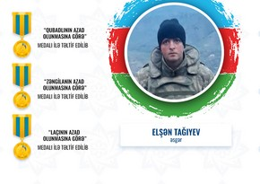 Dövlət Məşğulluq Agentliyinin əməkdaşları medallarla təltif edilib