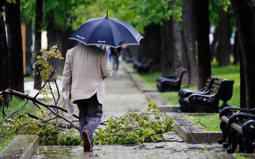 Желтый уровень опасности объявлен в Москве из-за грозы и ветра