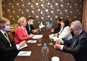 Председатель ПА ОБСЕ: Мы придаем большое значение сотрудничеству с Азербайджаном