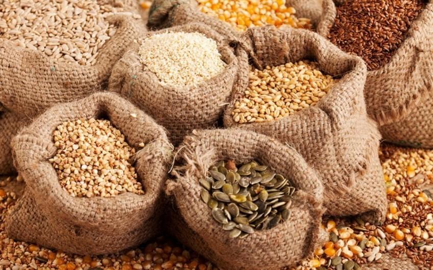 Азербайджан втрое увеличил импорт зерна и продуктов его переработки из России