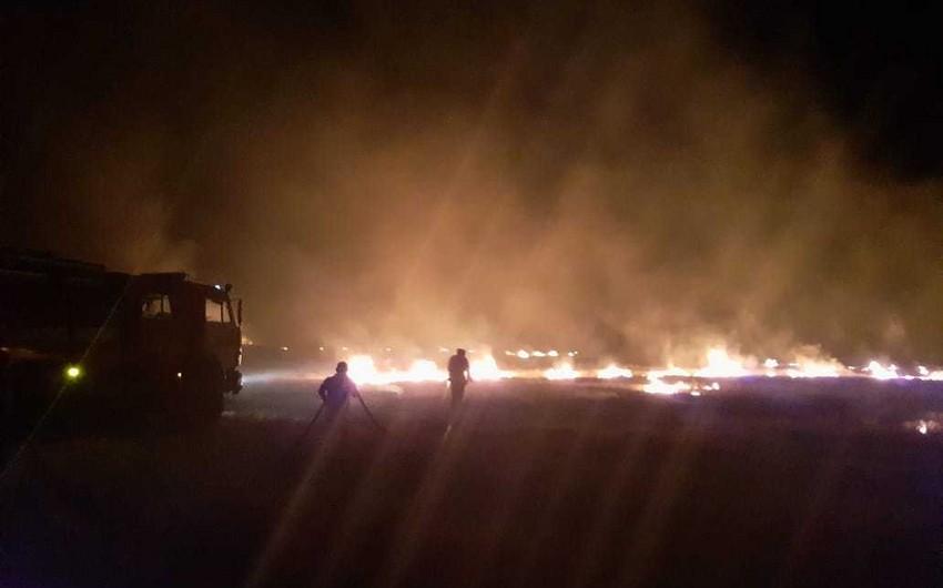 Kürdəmirdə biçilmiş taxıl sahəsində baş verən yanğın söndürülüb - YENİLƏNİB - FOTO