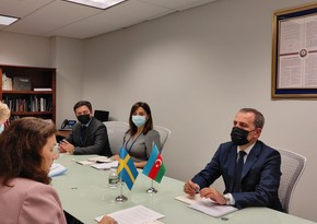 Глава МИД Азербайджана встретился с действующим председателем ОБСЕ