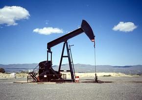 ABŞ-da neft hasilatının artması haqda xəbər neftin ucuzlaşmasına səbəb olub
