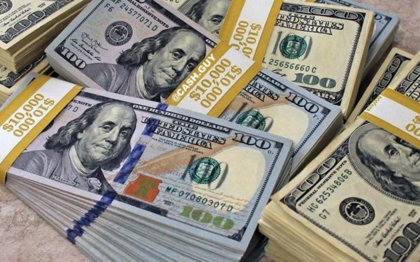 Rusiya Bankı dollar alışını dayandırdı