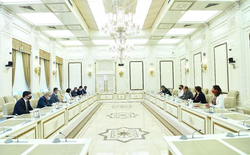 Sahibə Qafarova Fransa Milli Assambleyasının nümayəndə heyəti ilə görüşüb