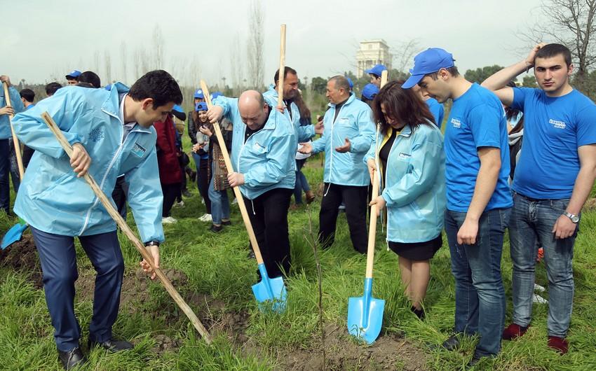 Gəncədə 700 min ağac əkək kampaniyası davam edir