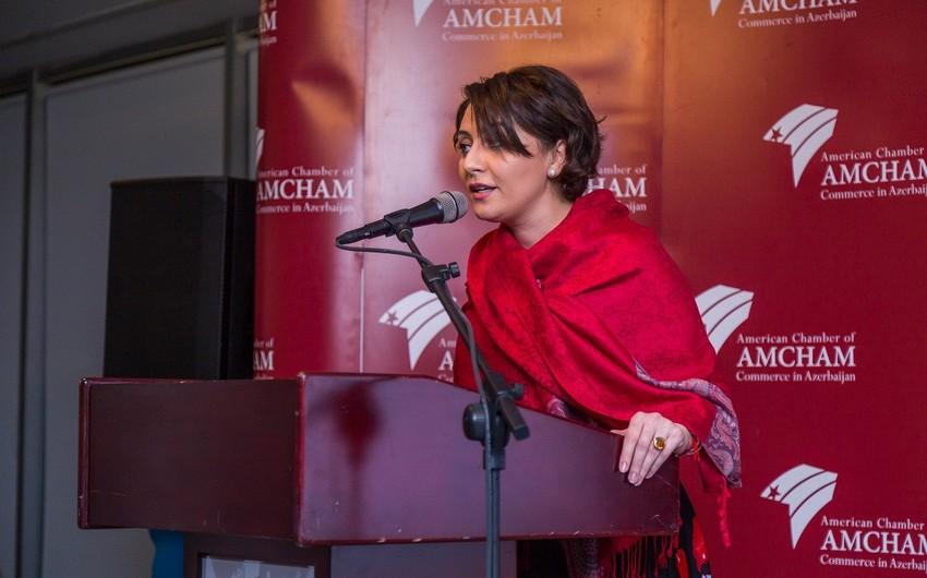 """""""AmCham"""" Azərbaycan hökumətinə yeni təkliflər təqdim edəcək"""