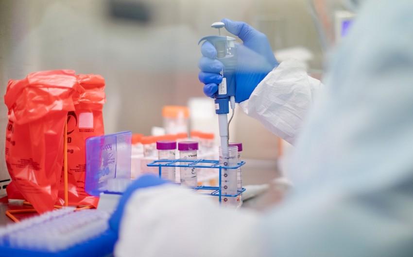Azərbaycana koronavirus testlərinin hansı ölkələrdən gətirildiyi açıqlandı