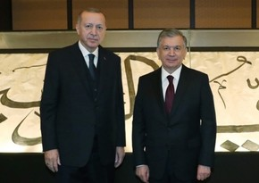 Heads of Turkey and Uzbekistan mull bilateral relations