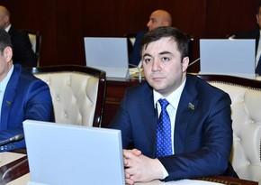 Депутатам из СНГ рассказали о деятельности кампании IDEA,возглавляемой Лейлой Алиевой