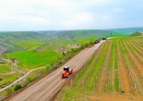 İsmayıllı rayonunda yol infrastrukturunun qurulmasına başlanılıb