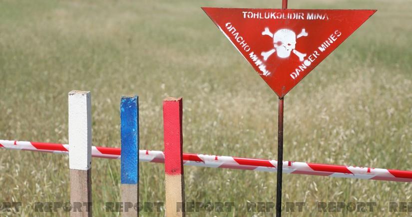 Landmine explosion in Azerbaijan's Gazakh leaves one civilian dead