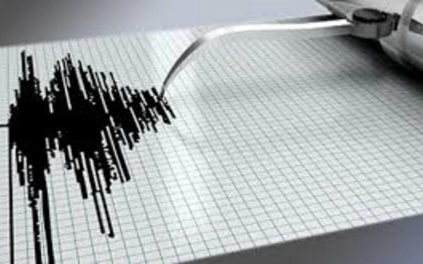 В Бразилии проведена массовая эвакуация из-за землетрясения в Боливии