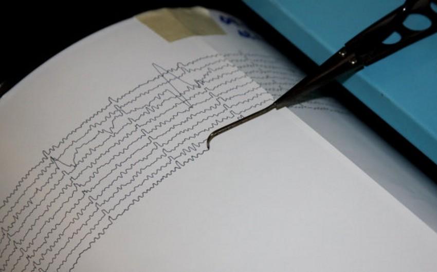 У Камчатки произошло землетрясение магнитудой 5,5